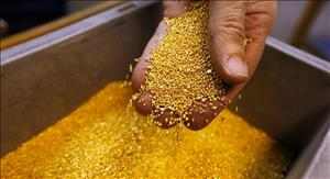 Private Sector to Implement Zarshouran Gold two_ton Plan