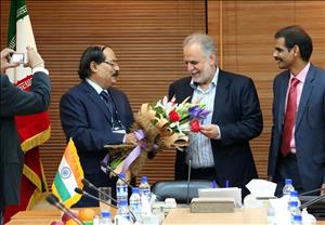 Iran, India Cooperating in Aluminum Sector